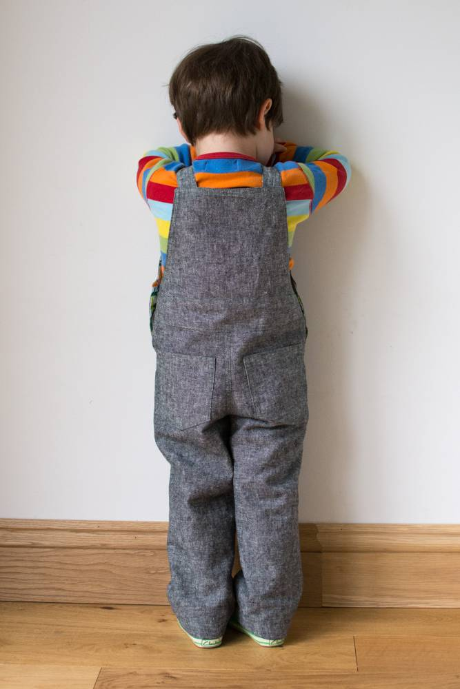 Frog Dungarees Back View